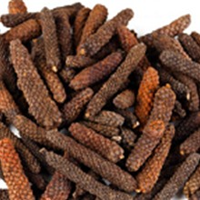 Tiêu Lốp Long Pepper